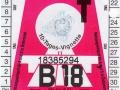 18385294V